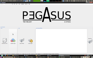 PEGASUS, welcome page.